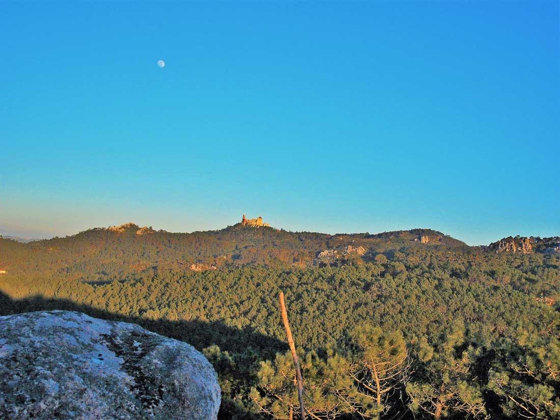 Caminhada Medronhos na Serra de Sintra