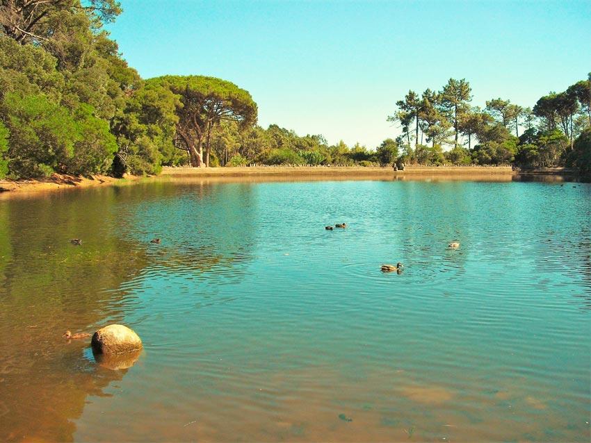 Caminhada Lagoa Azul - Serra de Sintra