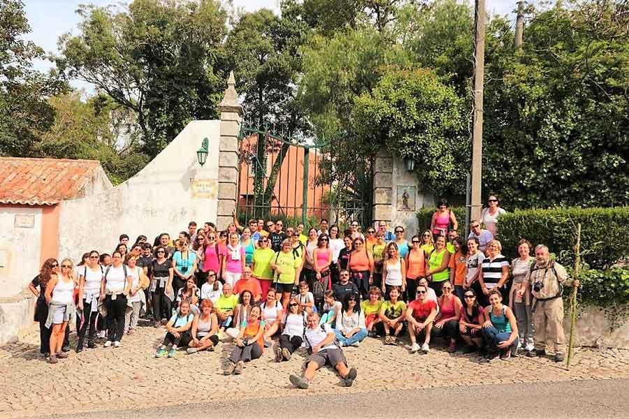 Caminhada do dia mundial da atividade física