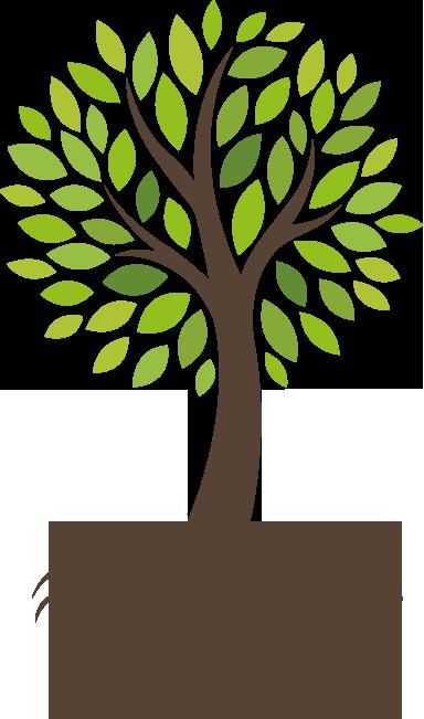 Uma Caminhada Uma Árvore