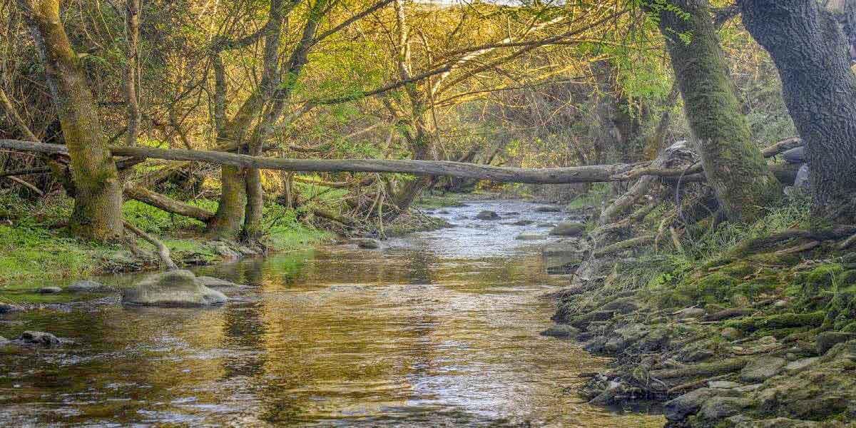 Caminhada na Ribeira da Cabrela e Aldeia de Broas